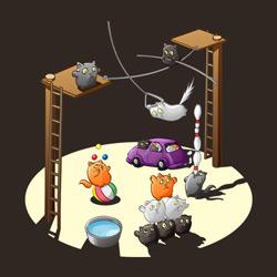 Acrocats