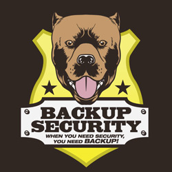 Veronica Mars Backup Security