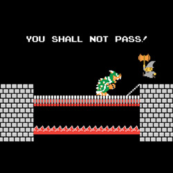 Bowser Shall Not Pass
