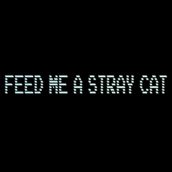 Feed Me A Stray Cat