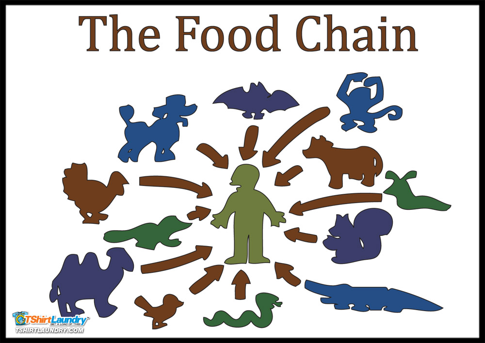 the food chain by - photo #43