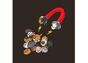 The (Cat) Magnet