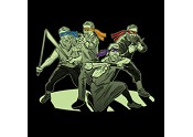 Middle Aged Renaissance Ninja Artists