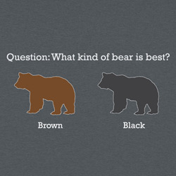 Brown Bear vs Black Bear -  Which is best?