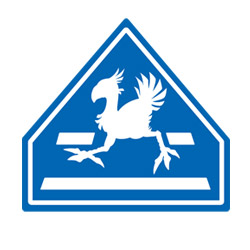 Chocobo Crossing