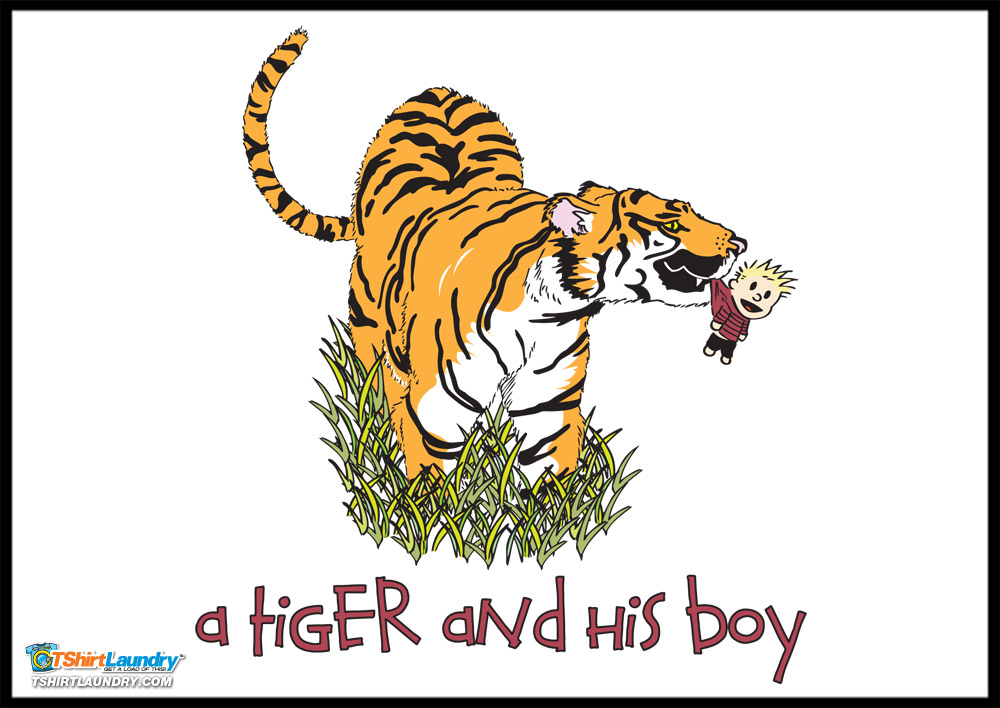 A Tiger and His Boy